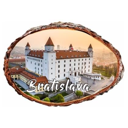 Magnetka kôra Bratislava 02