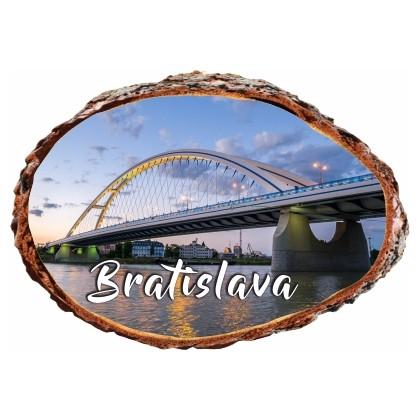 Magnetka kôra Bratislava 09