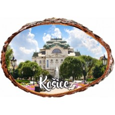 Magnetka kôra Košice 07
