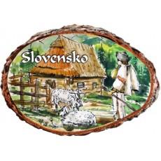 Magnetka kôra Slovensko 06